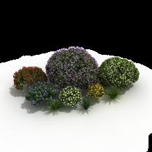 灌木-植物-灌木-CG模型-3D城