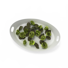 蔬菜-食品-蔬菜-CG模型-3D城