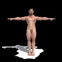 原创裸体壮男