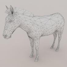 斑马-动物-哺乳动物-CG模型-3D城