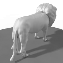 狮子模型-动物-哺乳动物-CG模型-3D城