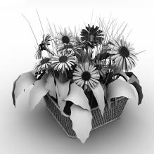 精品盆栽-植物-盆栽-CG模型-3D城