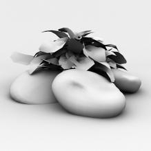 植物-植物-其它-CG模型-3D城