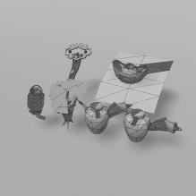 须庚环境中的怪-动物-其它-CG模型-3D城