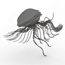触手-动物-鱼_水产-CG模型-3D城
