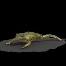 孤岛危机系列青蛙-动物-其它-CG模型-3D城