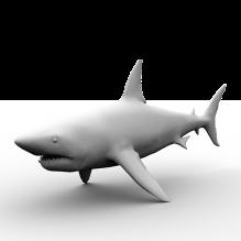 孤岛危机系列鲨鱼-动物-鱼_水产-CG模型-3D城