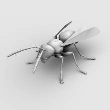 黄蜂-动物-昆虫-CG模型-3D城