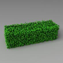 植物-植物-灌木-CG模型-3D城