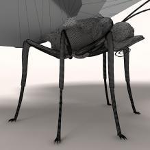 花蝴蝶-动物-昆虫-CG模型-3D城
