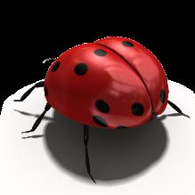 甲克虫-动物-昆虫-CG模型-3D城