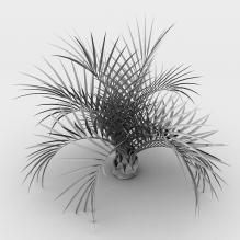 室外植物-植物-灌木-CG模型-3D城