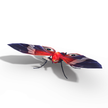 虫子-动物-昆虫-CG模型-3D城
