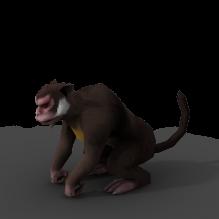野猴-动物-哺乳动物-CG模型-3D城