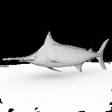 鲨鱼-动物-鱼_水产-CG模型-3D城