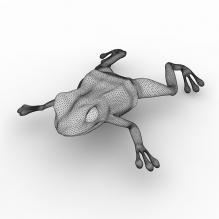 青蛙-动物-其它-CG模型-3D城