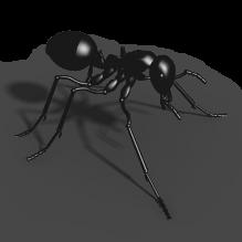 蚂蚁-动物-昆虫-CG模型-3D城