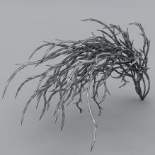 水草-植物-花_草-CG模型-3D城
