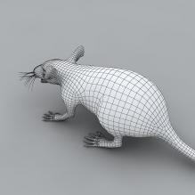 怪物-动物-科幻-CG模型-3D城